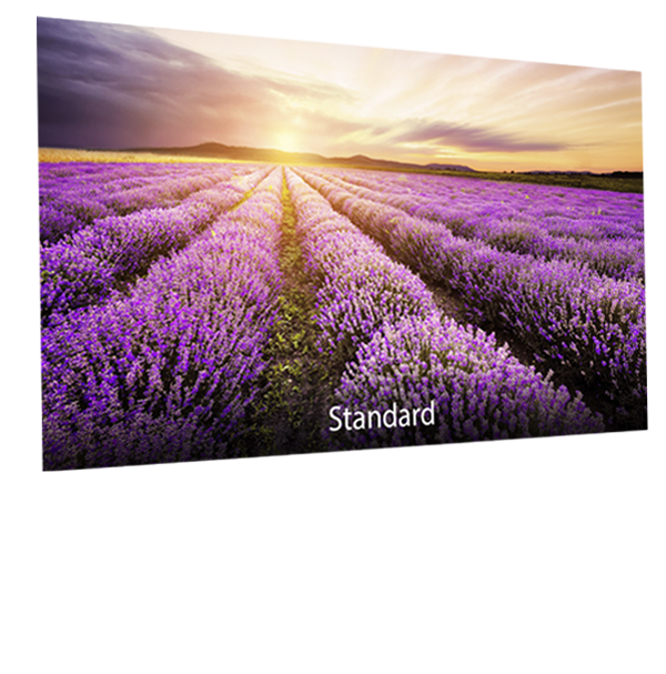 ASUS-Designo-BE24DQLB-blue-light-filter-standard