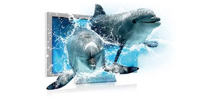 Podpora technologie Blu-ray 3D