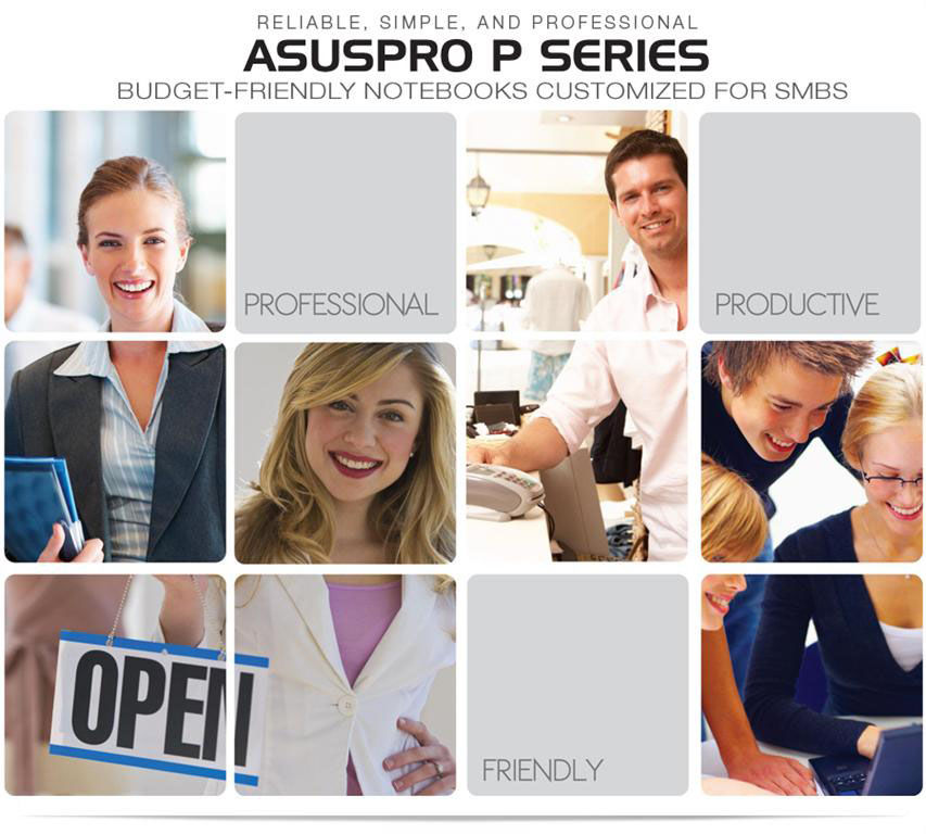 the ASUSPRO P Series