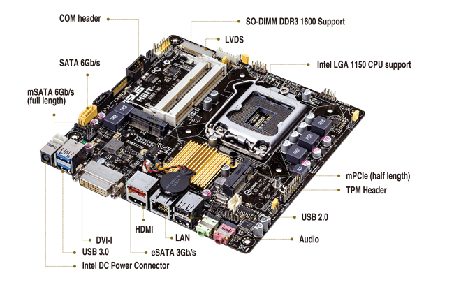 ASUS H81T GRAPHICS DRIVERS FOR PC