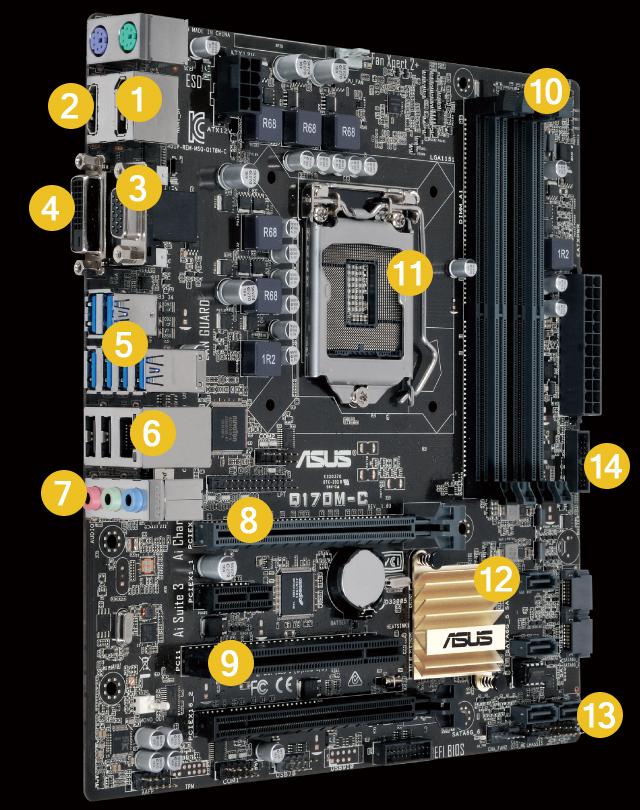 ASUS Q170M-C Intel LAN Driver for Mac