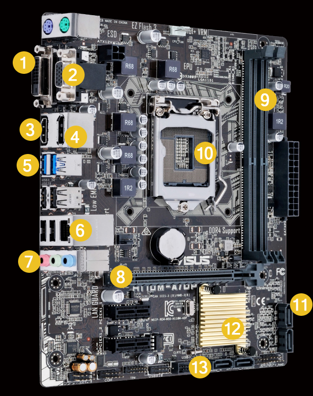 H110M-A/DP | Motherboards | ASUS USA