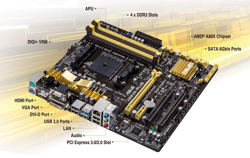 ASUS A55-C PLUS AMD GRAPHICS DRIVER WINDOWS