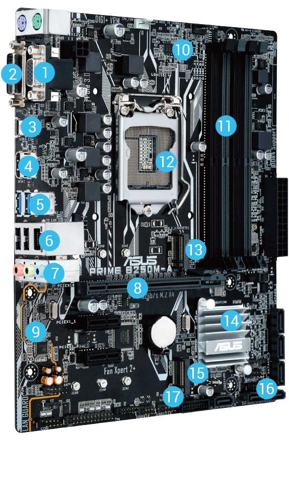 PRIME B250M-A | Motherboards | ASUS USA