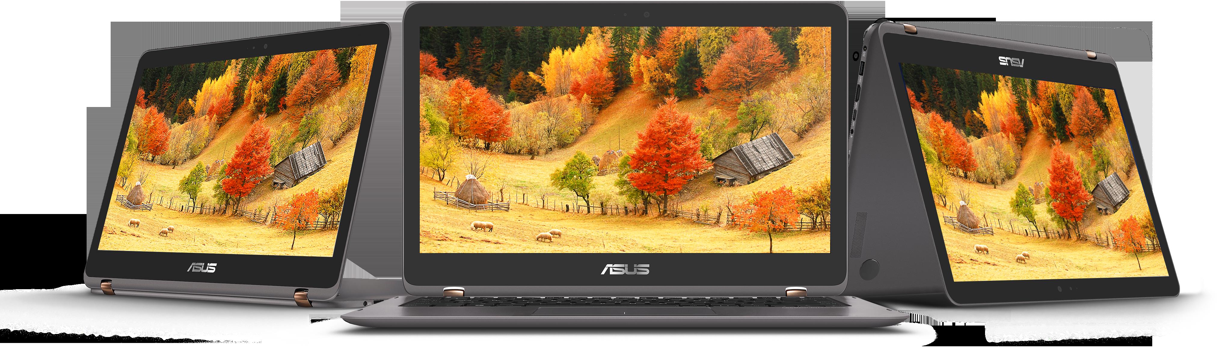 Review ZenBook Flip UX360UA