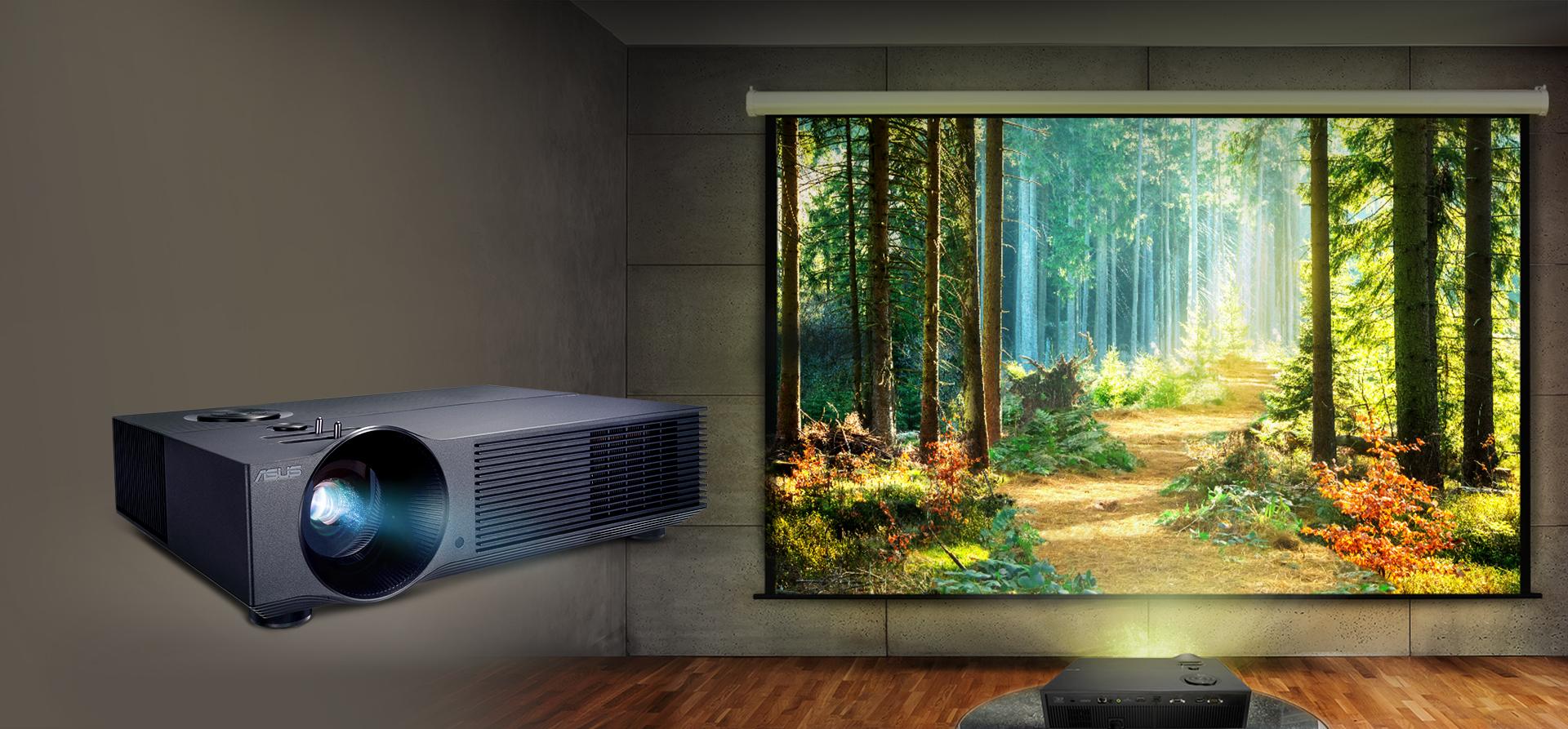 Découvrez des images lumineuses et immersives