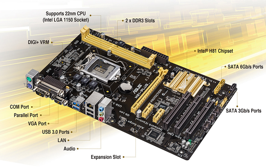 ASUS H81-PLUS GRAPHICS WINDOWS 8 DRIVER DOWNLOAD