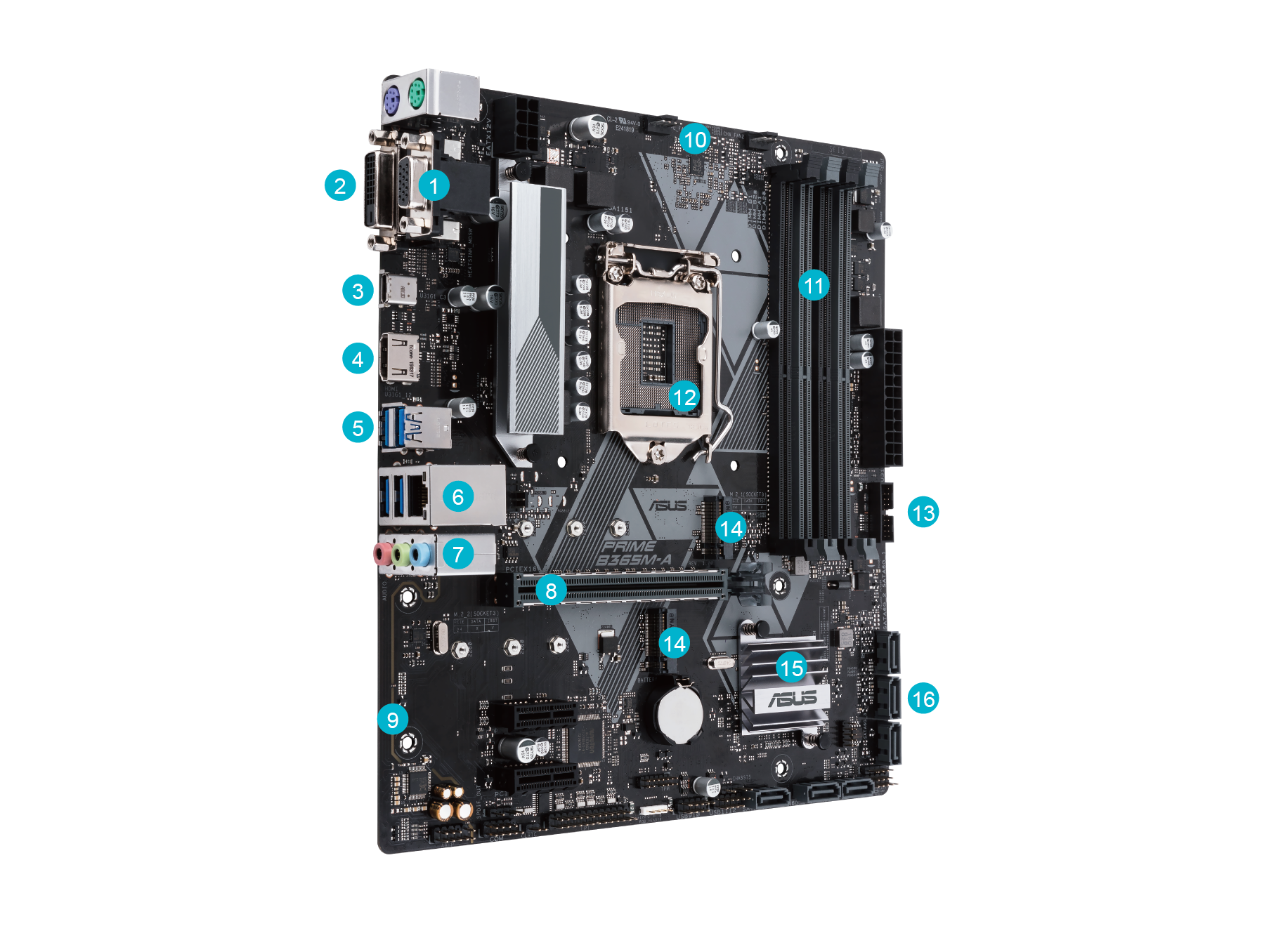 ASUS PRIME B365M-K mATX Motherboard for Intel LGA1151 CPUs